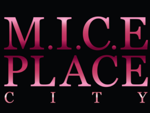"Mice Place City "" 2h de Paris"""