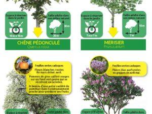 Environnement à Saint-Malo